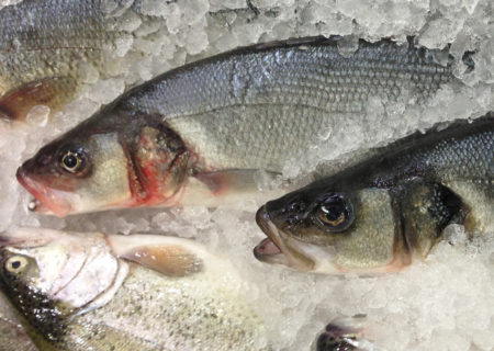 Fencebay Farm Shop - Sea Bass