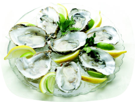 The Catch At Fins Restaurant- Oysters
